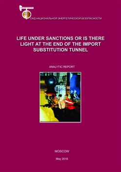 Life under sanctions or is there light at the end of the import substitution tunnel